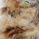 한천원료 묵 우무 식이섬유소 풍부한 우뭇가사리 1kg