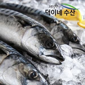 100% 국내산 남해안 손질 고등어 6미(1.4K) 특가판매