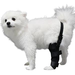 강아지 슬개골 탈구 관절 보호대 허리고정형 S 오른쪽