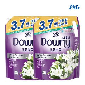 다우니 퍼플 섬유유연제 2.6L 화이트티와 릴리 향 2개