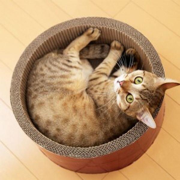 가리가리 써클 고양이쿠션 고양이실내 스크래쳐 고양