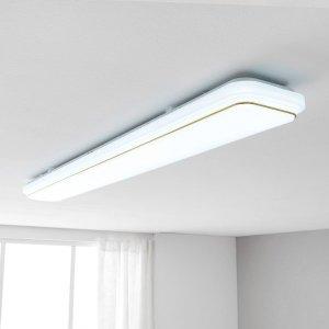 LED 노엘 주방등 55W