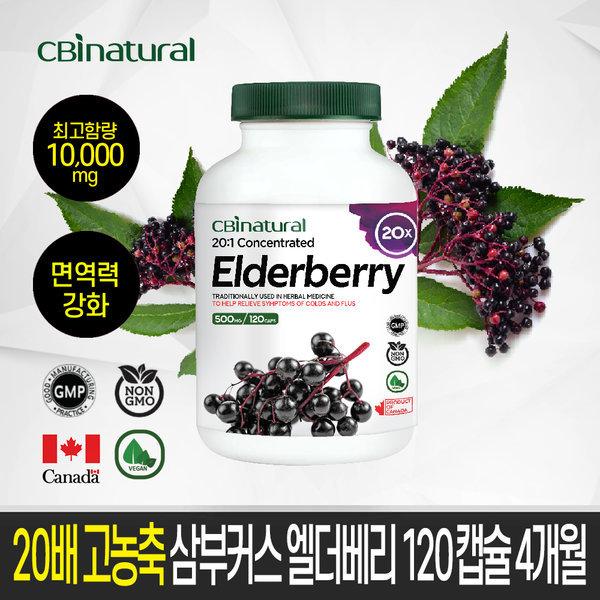 20배 고농축 삼부커스 엘더베리 120캡슐/면역력영양제
