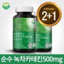 녹차카테킨500mg 애프터밀 다이어트식품 체지방 (2+1)