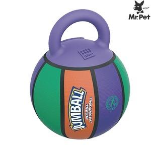 GiGwi(긱위) 짐볼 농구공