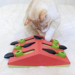 니나오토슨 멜론 머드니스 고양이 지능개발 먹이퍼즐
