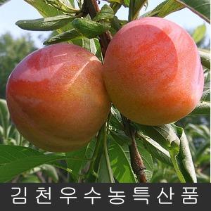 김천자두 자두5kg/3kg(왕특 131g~)추희/피자두/후무사