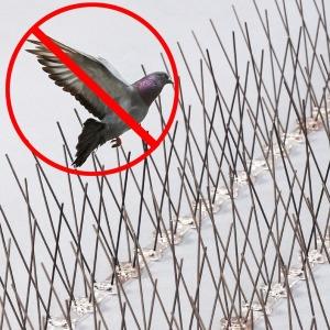 에어컨 실외기 비둘기 퇴치 용품 버드스파이크 퇴치법