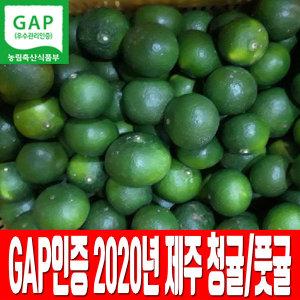 제주 GAP인증 청귤 풋귤 5kg 당일수확 당일발송
