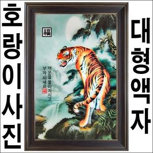 B651-1/대형호랑이액자/호랑이사진/호랑이그림
