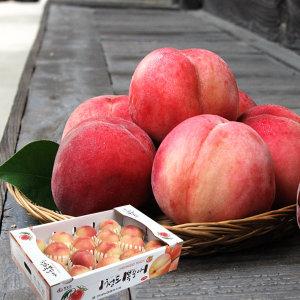 향긋달콤 털복숭아 4.5kg (18과내외)