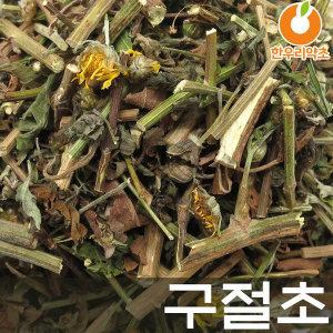 구절초 600g 국산 구일초 선모초
