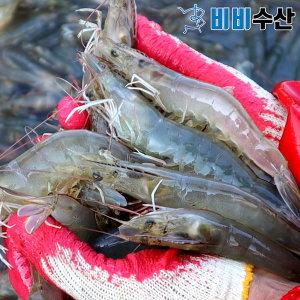 국내산 활새우 1kg 40-50미