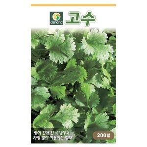 건강고수씨앗(코리안더) 200립 씨앗 허브 종자