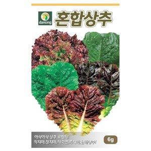 혼합상추 씨앗 6g 채소 종자