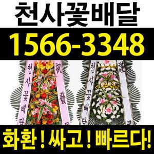 천사꽃배달/반값할인/축하화환/근조화환/장례식장화환