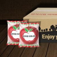 은이네사과나무 정품 세척사과 2kg(1인 소량 패키지)