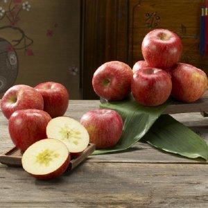 고당도 아삭아삭 청송사과 10kg가정용(42~54과)기스과
