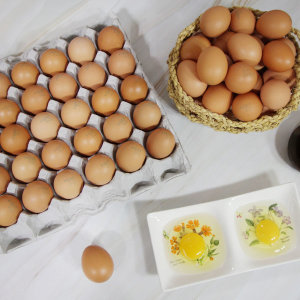 무항생제 싱싱한 계란 대란 60구 (30구 x 2판)