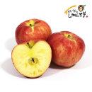 아침이슬 사과 가정용 부사 사과 8kg 중대혼합(24과내)