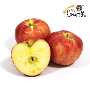 아침이슬 사과 가정용 빨간 사과 8kg 중대혼합(24과내)