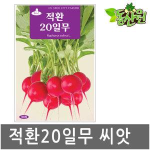적환20일무씨앗 600립/ 샐러드무 텃밭 채소씨앗
