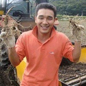 6-4년 금산인삼 수삼 난발삼 (햇삼)500G콩난발세척선택