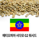 커피생두 에티오피아 시다모 G2 워시드 1kg X3개