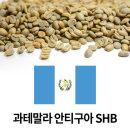 커피생두 과테말라 안티구아 SHB 1kg X3개