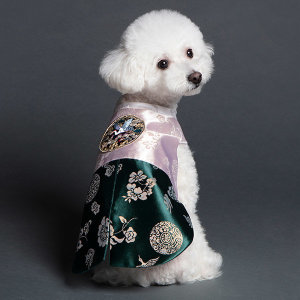 메종드독 강아지한복 별하쾌자