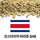 커피생두 코스타리카 따라쥬 SHB 1kg X3개