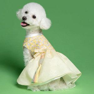 메종드독 강아지한복 골든벨