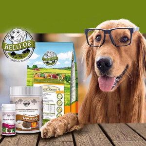 벨포아 강아지 곤충사료 강아지 눈물사료 7.2kg+간식