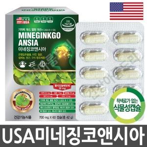 은행잎추출물 미네징코앤시아 60C/2개월/혈행개선아연