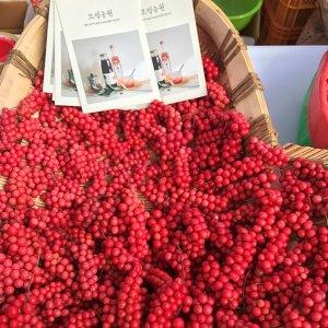 모정농원 생오미자 10kg 1박스 (2020년 생산)