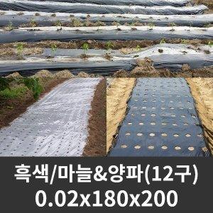 유공 멀칭비닐 흑색 마늘/양파 0.02x180x200 12구