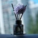 로즈하오 차량용 디퓨저 꽃망울 블랙 사려니 숲