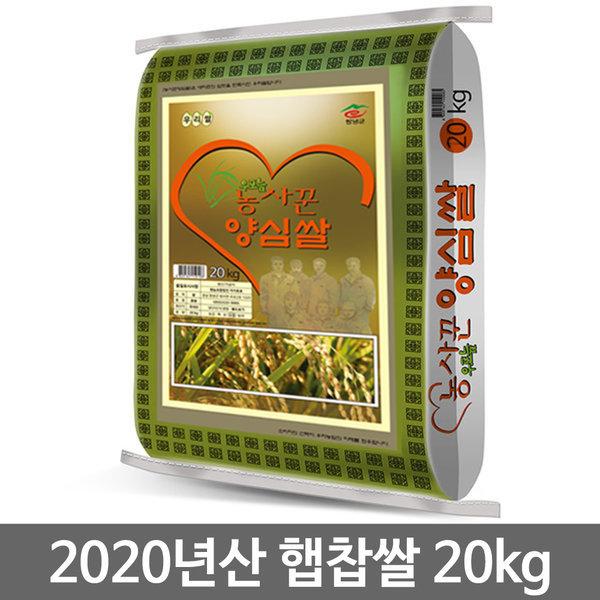 농사꾼 양심쌀 찹쌀 20kg 2020년산 햅찹쌀