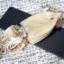 동해안 반건조 오징어 피데기 소 10미 900g내외