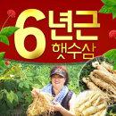 국산 가정용/수삼/인삼/오쿠용 6년근세척인삼500g4-6편