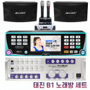 B1 업소용 노래방기계 6인치 스피커 가정용 무선 세트