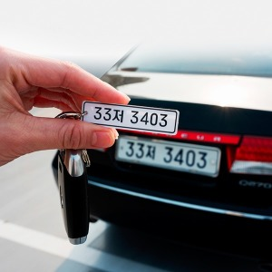 ZN 카넘버 키링 자동차 키홀더 열쇠고리 번호판키링
