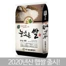 한결같은 늘조은쌀 20kg / 최근도정