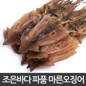 마른오징어 파품500g