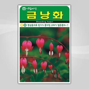 슬로시 꽃씨앗 금낭화20립 씨앗