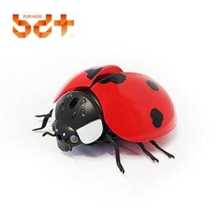 무당벌레 곤충 모형 피규어 장난감 인형