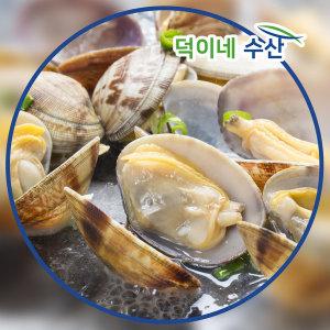 100% 국내산 남해안 왕 바지락 1.5K 특가판매