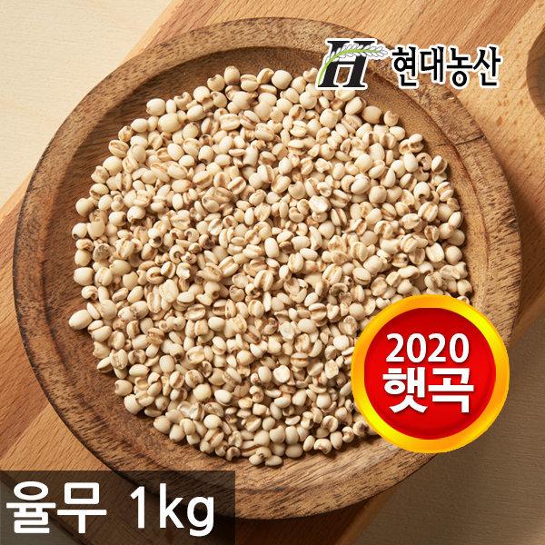 국내산 율무1kg /2020년산 햇곡