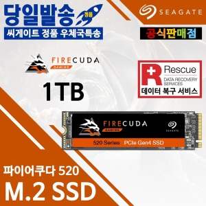 Seagate 파이어쿠다 520 M.2 SSD (1TB) 우체국특송
