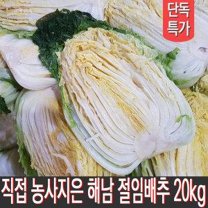 땅끝마을 해남 농가에서 직접 재배한 절임배추 20kg